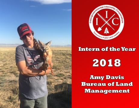 Intern of the Year 2018